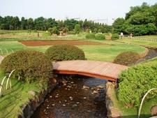 Pu La Deshpande Garden 8