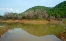 Reflections At Kambalakonda Wildlife Sanctuary