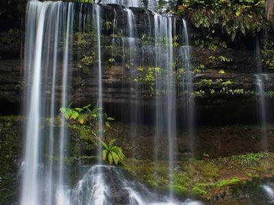 Russell  Falls  Mt  Field  National  Park