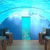Underwater Restoraunt Luxury Maldives Resorts Resort