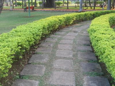 Walkway At  Shivaji Park In  Vizag