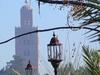 Marrakesh Excursion