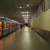 Devyatkino Station Platforms