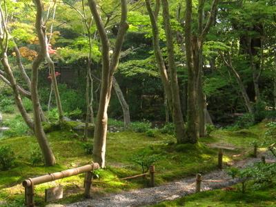 Garden Path In Murin-an