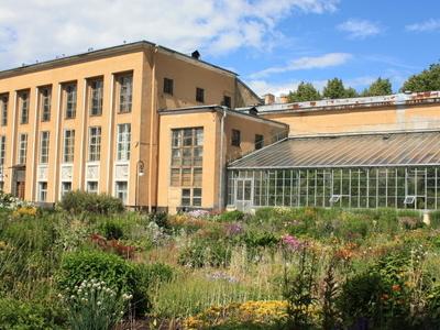 Northern Yard, Saint Petersburg Botanical Garden