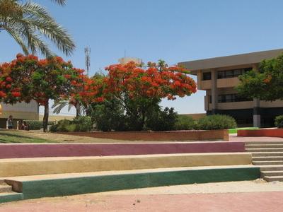 Ofakim High School