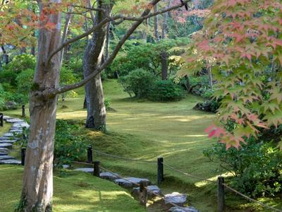 Tea Garden In Front Of The Tekisuian