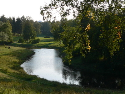 The Slavyanka River In Pavlovsk Park In Autumn