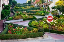 Lombard Street In San Francisco Ca Usa