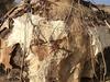 Dassanch Hut In Chalbi Desert Kenya