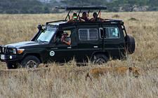 Tanzania Budget Camping Safarsi