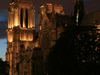 Notre Dame Arturosrex