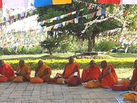 Monks At Lumbini