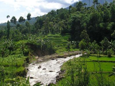 Garut  Westjava  Indonesia  Daytime