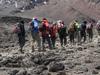 Kilimanjaro 008