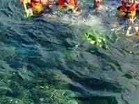 Snorkeling At Pahawang Besar Island