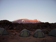 Tanzania Mount Kilimanjaro Sunrise Over The Summit Of Kibo From Millenium Camp
