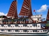 Halong Cruise