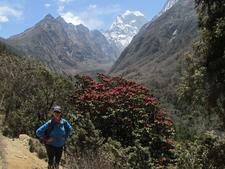Everest 100
