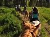 Horseback Pov Copy