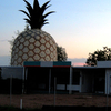 Gympie's Alternative Big Pineapple Prior To Its Demolition