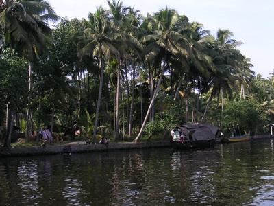 Village On Bank Of The Lake
