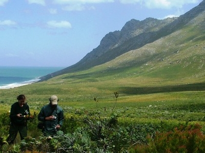 Kogelberg Nature Reserve