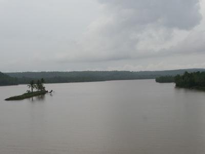 A View Of Valapattanam River From Parassinikkadavu Bridge