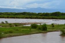 Rusizi National Park Burundi Discovery Tour