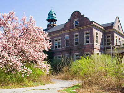 Administration In The Spring