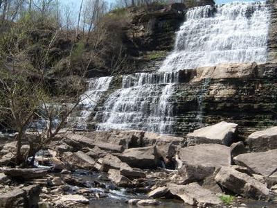 Albion Falls In