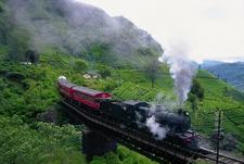 Rail Ride