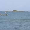 Coast Of Busua