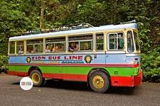 Reggae Zion Bus Line
