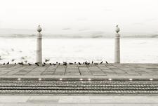 Lisbonphotographer Foto 01