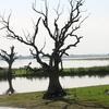 Thaungthaman Lake