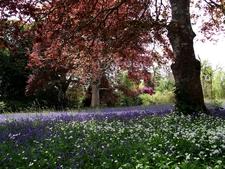 Visitpenryn Historic Enys Gardens