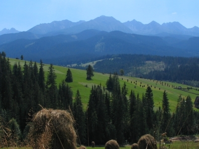 View On Tatry From The Village
