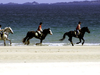 Horse Riding On Tramore Beach In Downings