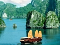Viet Travel Advisor