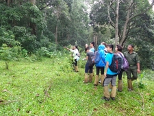 Jungle Walk Periyar National Park