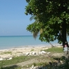 Beach At Port-Salut