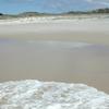 Waves On The Otama Beach