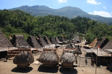 Flores Island Tours And Travel Indonesia
