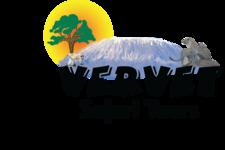 Vervet Safari Tz