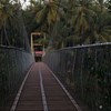 Hanging Bridge At Peralassery