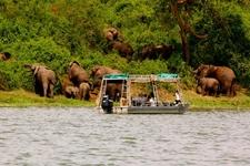 Boat Cruise On Kazinga