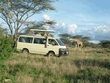 Game Viewing On Kenya Safari In Masai Mara