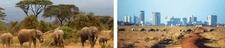 Park Nairobi Safari