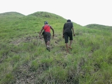 Trek At Komodo Island On Komodo Tours